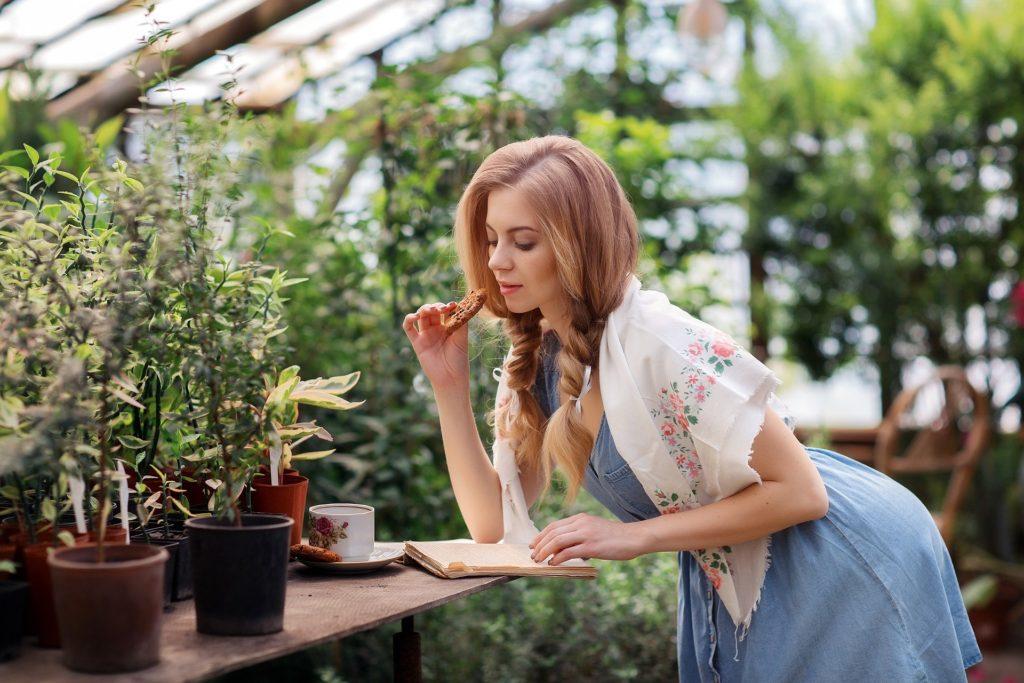 Cuidado flores y plantas